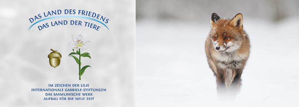 Header-Winter-de-fuchs2