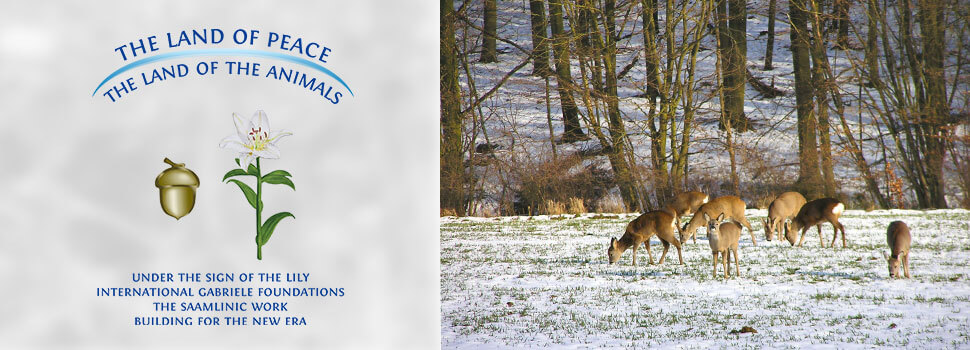 Header-winter-en-rehe