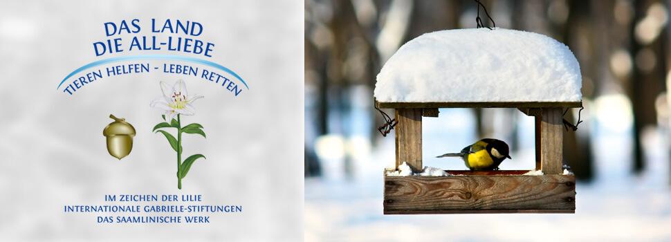 header-winter-meise-kasten