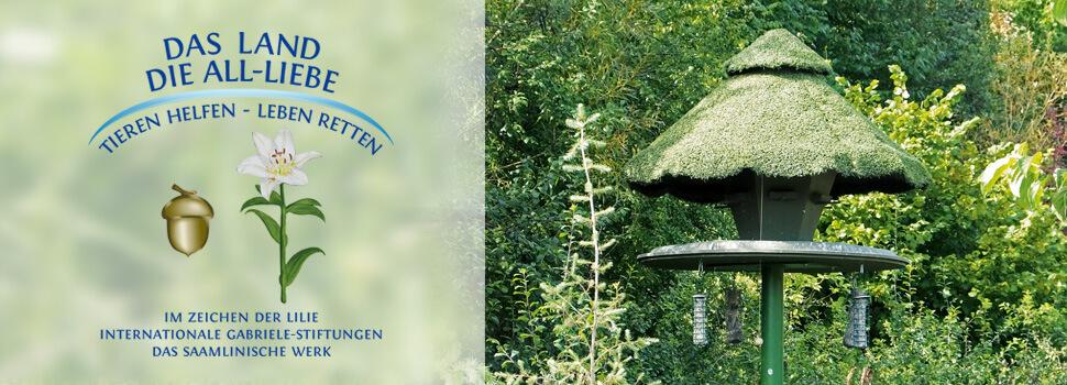 vogelhaus-gross-fruehling